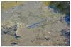 _JRR2809 (JR Regaldie Photo) Tags: mountain snow rocks nieve lagunas sierrademadrid peñalara jrregaldiephoto
