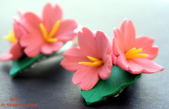 Cherry blossom hair clip (Rachana Saurabh) Tags: flowers hair cherry spring hand blossom handmade clip made polymerclay sakura mittidesigns