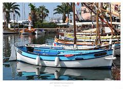 Life is like painting a summer view... (Jeff BOVE) Tags: sea sun mer france colors port painting harbor soleil boat nikon harbour couleurs palm peinture bateau catchy var bandol palmier barque d300s