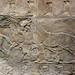 Lion Hunts of Ashurbanipal, horses