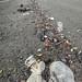 Marine debris at Pulau Ubin: being cleaned
