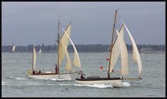 OGA Jubilee Festival Cowes 2013 (leightonian) Tags: uk island boat sailing unitedkingdom isleofwight solent gb gaffer isle cowes wight iow oga oldgaffersassociation