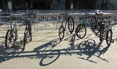 Bikes, light and shadows (peggyhr) Tags: light canada black lines whistler grey shadows bc circles bikes peggyhr p1050326a