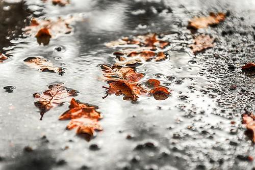 Regenpause I