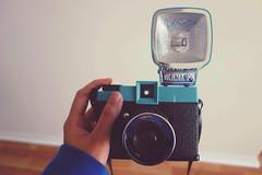 I think I should use you more. (Loren C.) Tags: camera lomography diana lomocamera dianafplus