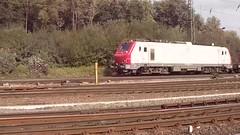 Prima Elok Alstom met goederentrein te Keulen Gremberg D 23-9-13 (pipoclown269) Tags: cargo prima alstom trein keulen elok gremberg alsthom goederentrein 2392013 treinenspot