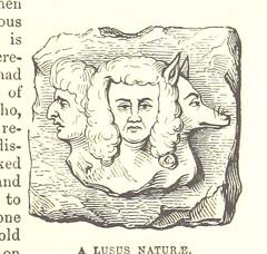 Anglų lietuvių žodynas. Žodis lusus naturae reiškia <li>Lusus naturae</li> lietuviškai.