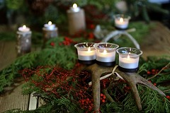 Custom antler candle holders