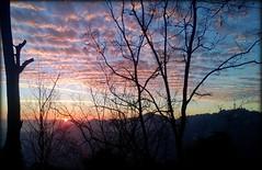 (mala singh) Tags: sunset india mountains shimla himalayas hillstation himachalpradesh