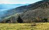 au dessus de MUNSTER  60  les VOSGES,  Beaute et Paysages de notre belle France, Guy Peinturier (GUY PEINTURIER) Tags: vairessurmarne beautedefrance guypeinturier bellefrance paysagesdefrance peinturierguy