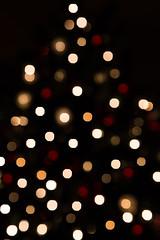 Christmas Lights 01 (Jim Dollar) Tags: christmaslights jimdollar canon6d