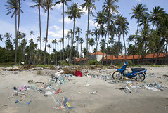 Moto (Van illa) Tags: blue seaside sand asia dump palm vietnam pollution rubbish motocycle мотоцикл мусор берег песок голубой свалка пальмы побережье вьетнам