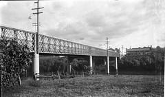 Belmore Bridge, Maitland, N.S.W. (maitland.city library) Tags: bridge river bridges newsouthwales hunter maitland petersmith belmore sydneysmith