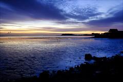 SF Bay - Shoreline