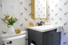 Ostrich Bathroom: Chapter Five (Reveal!) (emily @ go haus go) Tags: wallpaper bathroom diy five ostrich final makeover accessories reveal styling layered styled bewarethemoon finalreveal