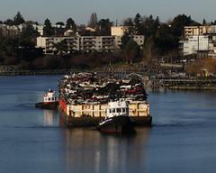 Seaspan Foam ~ Selkirk Waters (Chris City) Tags: harbour victoria tugboat tug tow barge towing seaspan