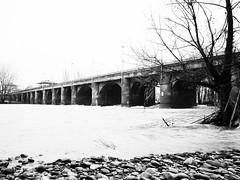 _2020980-1-Modifica (FloBue) Tags: bridge blackandwhite landscape ponte bologna reno schwarzweiss landschaft paesaggio biancoenero 2014 bruecke pontelungo