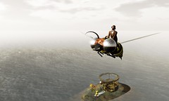 Riding a wasp (Ricco Saenz) Tags: forest sl secondlife ecosystem