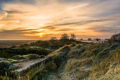 DSC_0073_edited-1 (gillkenn) Tags: winter mist sunrise lincolnshire saltfleetby