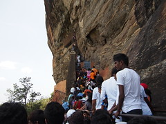When climbing to the top of Sigiriya i wasnt alone!