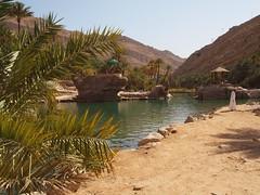 Wadi Bani Khalid, Oman (Hammerhead27) Tags: sun hot tree rock sand desert tourist oasis arab palmtree oman wadi