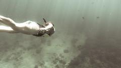 Some beautiful mermaid. (MatiFelipe) Tags: ocean blue sea naturaleza nature coral swim hawaii mar snorkel scuba diving playa snorkeling apnea sirena buceo oceano