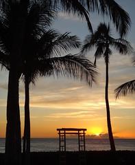 #Oahu #Hawaii #ParadiseCove #Luau () Tags: city friends sunset party vacation holiday silhouette feast island hawaii paradise waikiki oahu lei insel palmtrees luau   hawaiian honolulu isle rtw isla aloha vacanze vaction mahalo roundtheworld makaha  paradisecove globetrotter le hawaiianparty hawaiianmusic northpacificocean ewabeach kapolei  10days paradisecoveluau gatheringplace worldtraveler southoahu  thegatheringplace leewardcoast lau honokaihale     hawaii2011 09242011    o