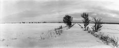 Söderfjärden plain (Foide) Tags: road winter panorama horizon plain winterroad blackwhitephotos söderfjärden
