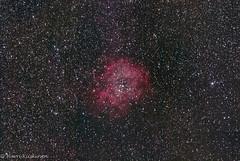 Rosette Nebula (HapaK.) Tags: nebula rosette ngc2237 astrometrydotnet:status=solved astrometrydotnet:id=nova1019875