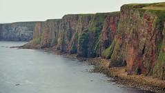 Eternal (little_frank) Tags: ocean sea cliff nature beauty rock vertical wonder scotland vertigo glorious highland shore destination geology verticality seacliffs duncansbyhead littlefrank marcofranchino