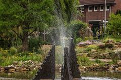 2014 may. Botanical garden Kerkrade (kuipjedebats1) Tags: eos botanicalgarden toodark lowcontrast infocus reeuwijk the netherlands canon mediumquality jc 1100d efs55250mmf456isstm kuipjedebats kuipers