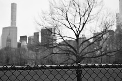 (irving.ph) Tags: nyc abstract centralpark btw