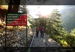 Mountains are the beginning and the end of all natural scenery... and so we started... (koushikzworld) Tags: mountain nature trekking photography fuji indian sony himalayas ganga gangotri gomukh carlzeiss shivling bhagirathi uttarakhand gaumukh koushikzworld koushikbanerjee