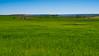 Anchos campos, larga vida (Jesus_l) Tags: españa europa valladolid mucientes camposdecastilla jesúsl