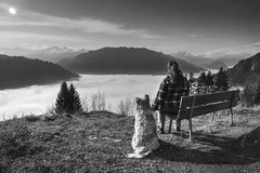 Would you like to say something before you leave? (PeterThoeny) Tags: sunset sky blackandwhite woman cloud dog mountain alps nature monochrome fog clouds landscape schweiz switzerland raw day suisse natural cloudy outdoor serene mountainside svizzera hdr swissalps graubnden grisons photomatix fav200 prttigau seaoffog 1xp schuders nex6 selp1650