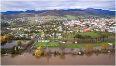New Norfolk Flooding (Trains In Tasmania) Tags: water river flooding view flood derwentvalley australia aerial vista tasmania murky drone derwentriver riverderwent dji newnorfolk trainsintasmania stevebromley djiphantom3standard phantom3standard