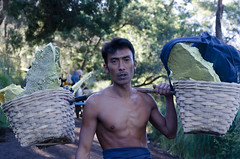The sulphur carried down the mountain (JohnMawer) Tags: portrait indonesia java jawatimur ijen sempol