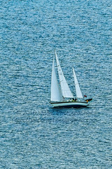 Faraway In the Ocean - 800mm Zoom (Mark & Cy Photos) Tags: ocean life lighting camera travel light sea portrait sports sport vertical by composition sailboat lens photography boat photo still marine sailing ship exterior view angle natural general outdoor body earth top crafts offshore arts environmental style gear vessel aerial transportation land vehicle format framing dslr setting orientation feature genre 6501300mm flickryes waterartscraftsphotographyworkflowgeocodedyesflickryessettingexterioroutdoorphotogenrestyletypetravelsportlifegeneralgearlens6501300mmstillcameradslrorientationportraitlightingnaturallightframingcompositionenvironmentalf geocodedyes