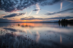 Tranquility (Sebo23) Tags: ruhe tranquility sonnenuntergang sunset water wasser bodensee lakekonstanz langzeitbelichtung longtimeexposure reflections reflektionen reichenau canon6d canon24704l