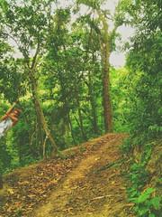 O foco  nunca perder o esprito aventureiro.  #guaramiranga #camping #vibepositiva #aventura #friends #natureza #photolike (felipeviturino) Tags: camping friends natureza aventura guaramiranga vibepositiva photolike