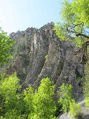 American Fork Canyon (chickadee23) Tags: mountains forest utah parks canyon views rockformations americanfork