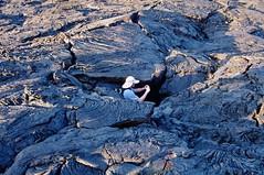 Daniel Cox down in Lava Crevass (Susan Roehl Thanks for 5.1 M Views) Tags: southamerica ecuador lavaformations photographictours pentaxk7 galapagos2013 naturalexposures sueroehl bartholomeisland