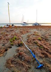 Anchor Out (chadbach) Tags: ocean camping camp water island bay boat sailing texas mud adventure 200 sail tandem hobie 2016