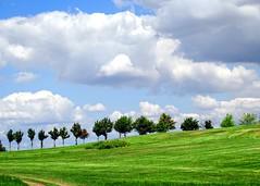 Summer in the country (Tobi_2008) Tags: trees summer sky grass clouds germany landscape deutschland sommer saxony wiese himmel wolken ciel sachsen gras landschaft bume allemagne germania platinumheartaward