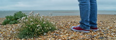 """Kick off your red shoes"" (daisyglade) Tags: red summer beach boyfriend solitude sunday solent denim bluejeans davidbowie calshot letsdance plimsoles hisnewshoes kickoffyourdanceshoesandsingtheblues"