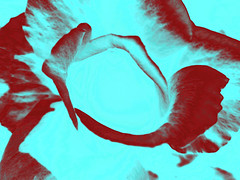 red rose processed ... (N0601) (Le Photiste) Tags: red art wow artwork nikon ngc digitalart redrose photographers clay processed soe fairplay selectivecolor giveme5 autofocus photomix simplyred ineffable digitalartwork prophoto friendsforever simplythebest finegold artandsoul bloodsweatandgears greatphotographers lovelyshot selectivecolours creativeart digitalcreations artyimpression beautifulcapture damncoolphotographers myfriendspictures artisticimpressions simplysuperb thebestshot digifotopro afeastformyeyes artforfun simplybecause iqimagequality yourbestoftoday artofimages saariysqualitypictures redmania hairygitselite worldofdetails lovelyflickr vividstriking universalart blinkagain digitalartfx2 theredgroup kreativepeople transportofallkinds photographicworld aphotographersview thepitstopshop thelooklevel1red showcaseimages mastersofcreativephotography creativeimpuls vigilantphotographersunitelevel1 cazadoresdeimágenes momentsinyourlife livingwithmultiplesclerosisms infinitexposure django'smaster bestpeople'schoice planetearthart