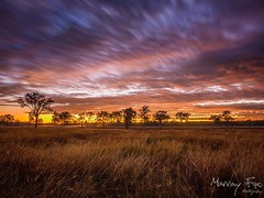 Purga Sunrise (Muzfox) Tags: travel cloud color colour colors clouds rural sunrise landscape photography colours country scenic australia queensland ipswich