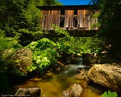 The Reversed Bridge (scottducey209) Tags: california longexposure bridge green water 30 oregon creek nikon stream tahoe tokina 49 covered nd lush ferns rhubarb haida atx hwy49 yuba yubariver tahoenationalforest indianrhubarb 1000x 1116mm d5200 california49 prodxii goldenchainhighway motherlodehiway middleyuba