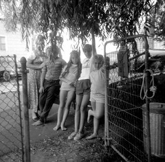 The entire Summer 1972 crew. Left to right - My mom with her arm on one of my L.A. cousins, Dad in the background with glasses, my sister, a good friend of mine and a girl cousin from L.A. who grew up to be stunningly gorgeous.  Milford Connecticticut (wavz13) Tags: film grain squareformat barefoot oldphotographs grainy oldphotos oldcars vintagecars instamatic 126 oldfamilyphotos lacousins vintagephotos vintageclothes 126film weepingwillows oldphotography vintageclothing vintagephotographs vintagekids verichromepan metalgates vintagephotography vintageteens vintageteenagers 1970sphotos vintagefamilyphotos connecticutphotography oldclothing teenagememories connecticutphotos metalgarbagecans 1970sphotographs vintageconnecticut 1970sphotography oldconnecticut oldmilford teenmemories connecticutphotographs oldconnecticutphotography oldconnecticutphotos vintagewoodmont oldwoodmont vintagemilford 1970swoodmont 1970smilford vintagefamilyphotography oldfamilyphotography vintageteenboys vintageteenageboys losangelescousins vintageteenagegirls vintageteengirls steelgarbagecans