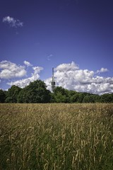 Urban Nature, witches meadow, Hilversum (ParadoX_Design) Tags: blue summer sky sun tower netherlands field architecture season wheat harvest nederland meadow broadcasting grasses witches kpn hilversum wheatfield heksenweitje omroepen mediastad